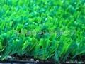 供應人造草、AJ-CP001-5、人造草坪、休閑草、休閑草坪 3