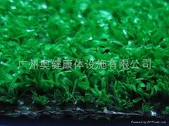 供应人造草、AJ-CP005、人造草坪、休闲草、休闲草坪