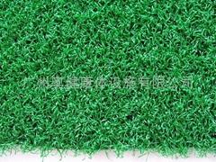 供应人造草、AJ-PEA10、人造草坪、休闲草、休闲草坪