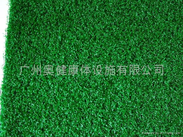 供應人造草、AJ-PEA10、人造草坪、休閑草、休閑草坪 2