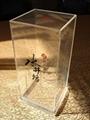 有机玻璃(压克力)酒类展架 4