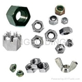 nut,hex nuts, flange nuts, square nuts, wing nuts, cap nuts, nylon nuts, jam nut