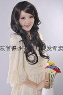 温婉女性迷人长卷假发(E043)