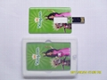 Card USB Flash DISK /USB FLASH DRVIE /USB MEMORY/PEN DRIVE (Hot Product - 2*)