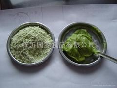 芥辣粉(wasabi powder)