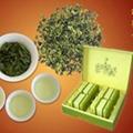 茶農直銷 08暑茶極品濃香型參