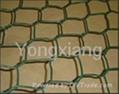 Hexagonal Wire Mesh/wire netting/china