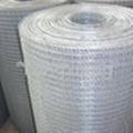 welded wire mesh/wire she  ings/wire