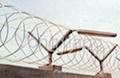 Razor Barbed Wire/wire shelvings/wire