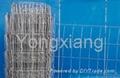 Metal Euro Fencing/ga  anized iron wire