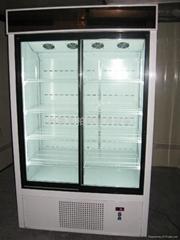 雙門冰櫃(趟門)