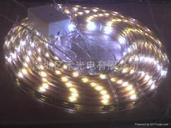 5050贴片防水LED软灯条,5050灯条,表面滴胶灯条