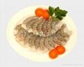 Shrimp PND