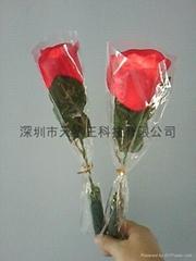 发光玫瑰花