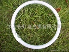 T6 Tri-phosphor Fluorescent Circular Lamp