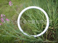T5 Tri-phosphor Fluorescent Circular Lamp