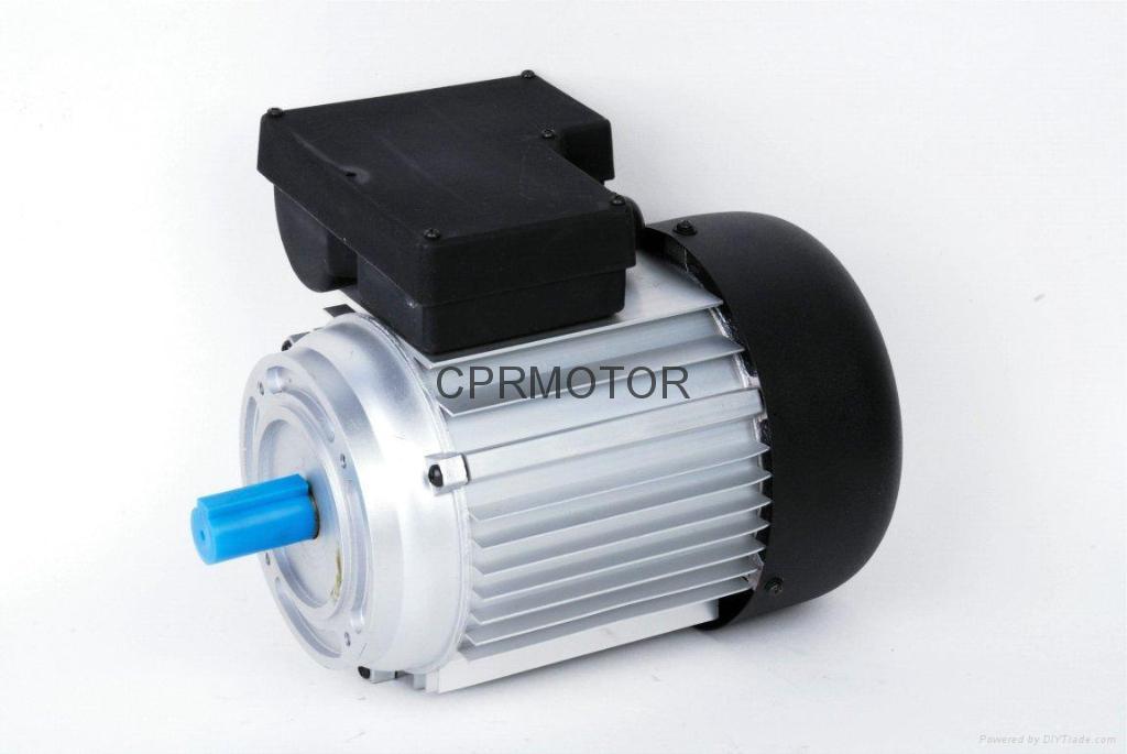 Single phase induction motor yl madi china for 2 phase induction motor