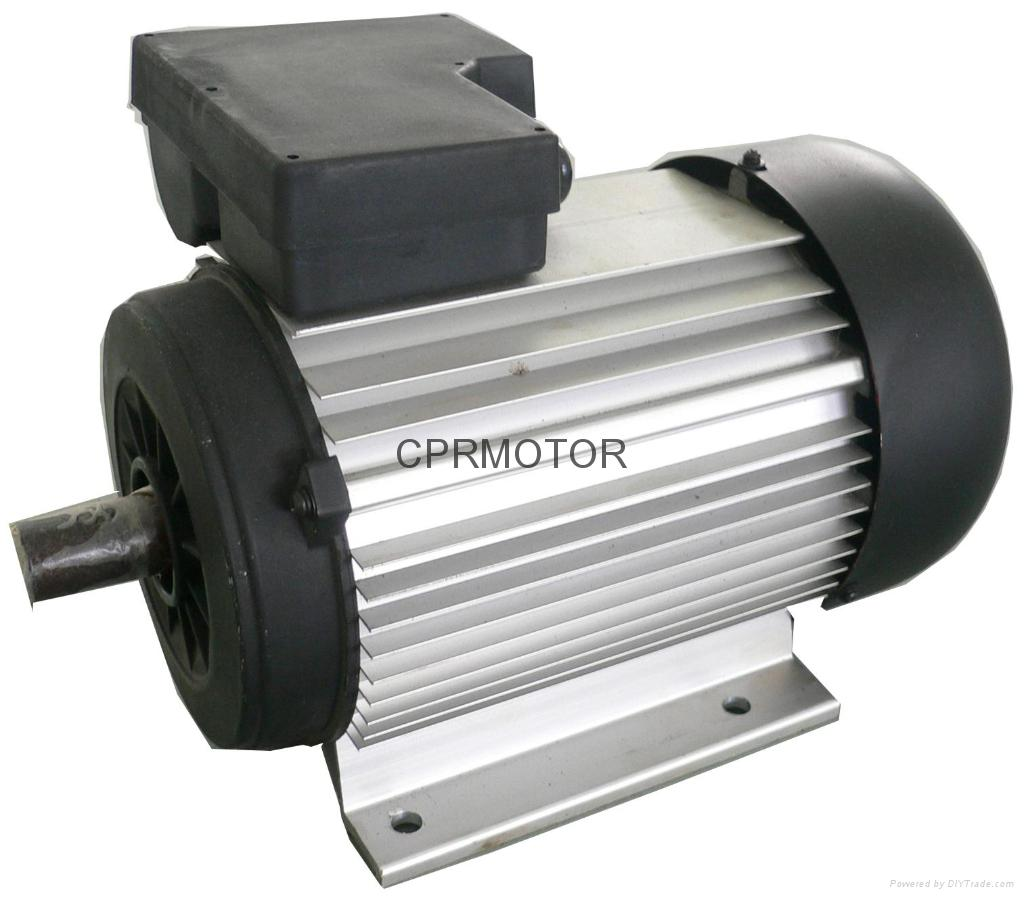 Single Phase Induction Motor - Yl