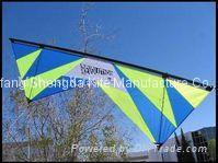 Popular kites worldwide
