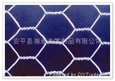 铁丝网 不锈钢网 轧花网 六角网