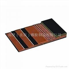 Nylon Conveyor Belt  conveyor belt(used conveyor belt)
