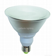 Par 38 Energy Saving Lamp