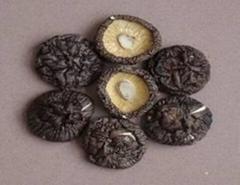dried mushroom (shiitake)