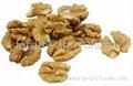 walnut kernel