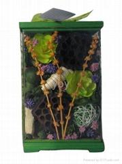 Potpourri in acetate box