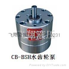 CB-B10SH水齿轮泵