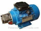 批发齿轮油泵机组RHB-2.5JZ