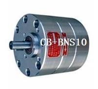 CB-B10NS陶瓷不锈钢齿轮泵