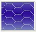 Hexagonal Wire Mesh  1