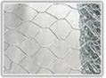 Hexagonal Wire Mesh  4