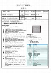 IC43DR16320B-3DBL