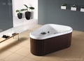 Hot tub SPA jacuzzi surf whirlpool bathtub 5