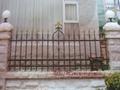 供应高品质铁艺围墙栏杆 3
