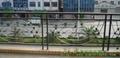 供应高品质铁艺围墙栏杆 5