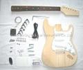 Guitar Kits 1