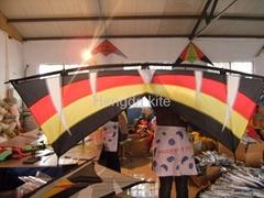 Quad line stunt kite