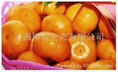 Nanfeng tangerine,mandarin orange