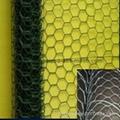 Hexagonal Wire Netting 5