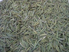 export green tea 9380