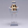 crystal perfume light 5