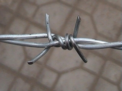 供应刺绳网,刀片刺绳