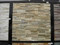 Quartzite Wall Cladding Tiles