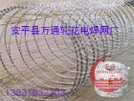刺绳,刀片刺绳,刺铁丝