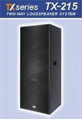 Two-Way Loudspeaker System