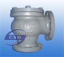 5K JIS-marine- cast iron lift check globe valve