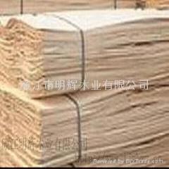 桉木单板-1270*640*1.7mm